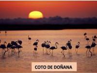 coto_doñana